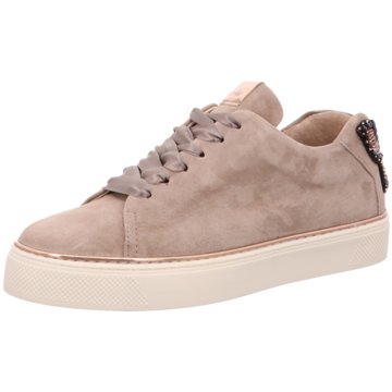 Alpe Woman Shoes Sneaker World beige