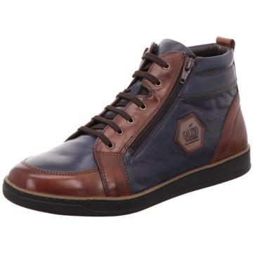 b3f42a3d0d4838 Galizio Torresi Herrenschuhe jetzt günstig online kaufen