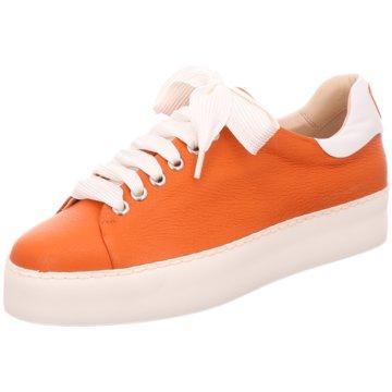 Camerlengo Sneaker orange