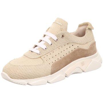 Moma Sneaker gold