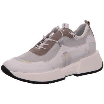 Donna Carolina Sneaker Low weiß