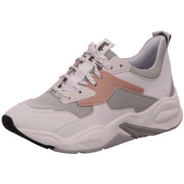 Timberland Sneaker Low weiß