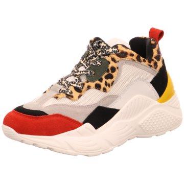 Steve Madden Top Trends Sneaker weiß