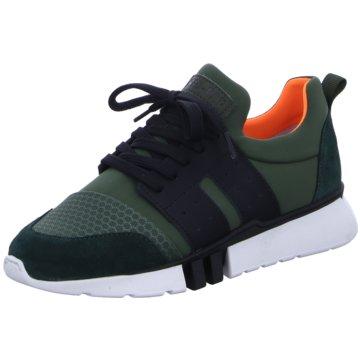 Develab Sneaker Low grün