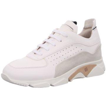 Moma Schuhe für Herren online kaufen |