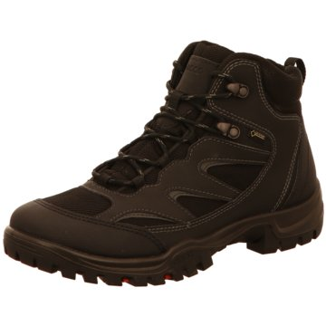 Ecco Outdoor SchuhXpedition III braun
