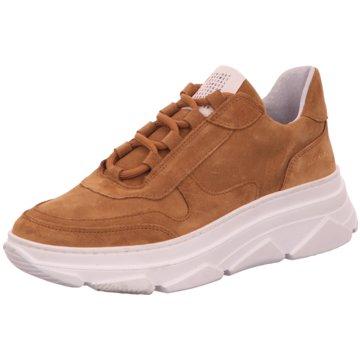 Black Top Trends Sneaker braun