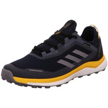 adidas Outdoor SchuhTerrex Agravic Flow Boost GTX blau