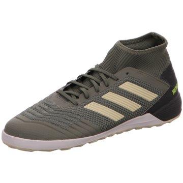 adidas Hallen-SohlePREDATOR 19.3 IN - EF8209 grün