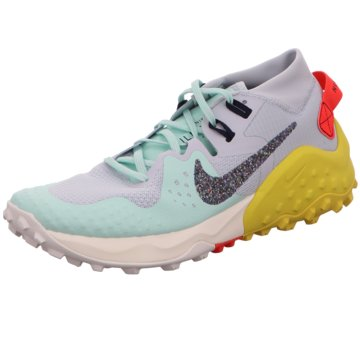 Nike RunningWildhorse 6 grau