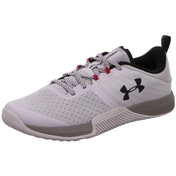 Under Armour TrainingsschuheTRIBASE THRIVE - 3021293 grau