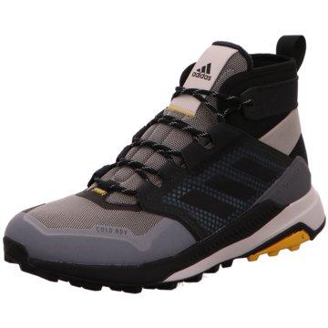 adidas Outdoor SchuhTerrex Trailmaker Mid COLD.RDY grau