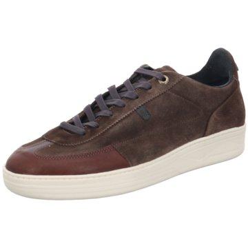 Floris van Bommel Sneaker Low braun