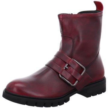 Donna Carolina Boots rot