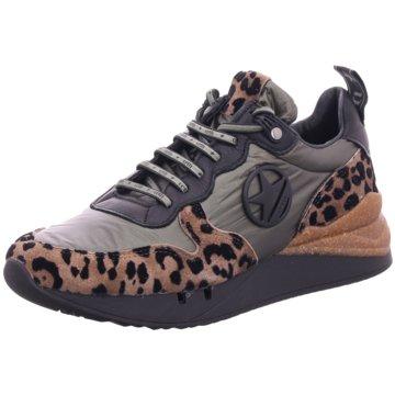 Cetti Sneaker Low animal