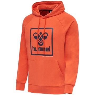 Hummel HoodiesISAM HOODIE - 206521 rot