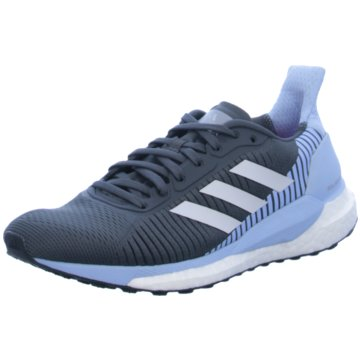 adidas RunningSolar Glide Boost ST 19 Women grau