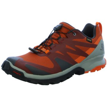 Salomon TrailrunningSchuhe XA ROGG GTX Burnt Bric/PHANT orange