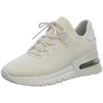 Ash Sneaker Low weiß