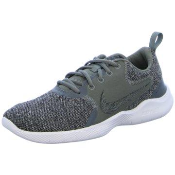 Nike RunningFLEX EXPERIENCE RUN 10 - CI9960-004 grau