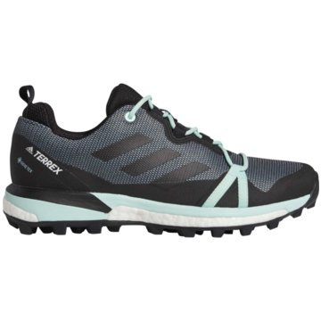 adidas TrailrunningTerrex Skychaser LT GTX -