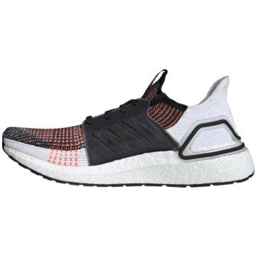 adidas RunningUltraBOOST 19 m -