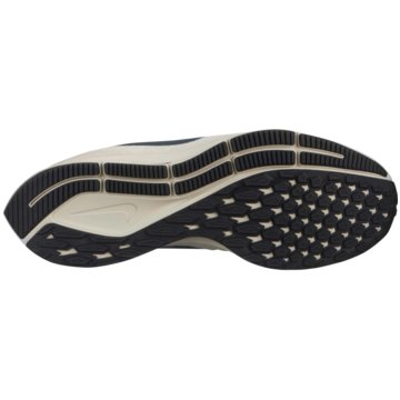 Nike RunningAir Zoom Pegasus 35 -