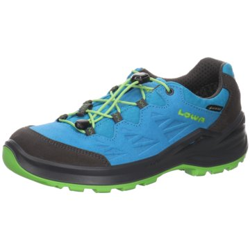 LOWA Wander- & BergschuhDIEGO II GTX LO - 650150 blau