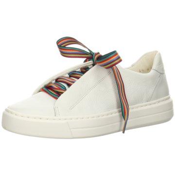 ara Sneaker LowCOURTYARD weiß