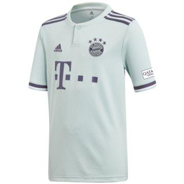 adidas FußballtrikotsFC Bayern München Auswärtstrikot 2018/19 weiß