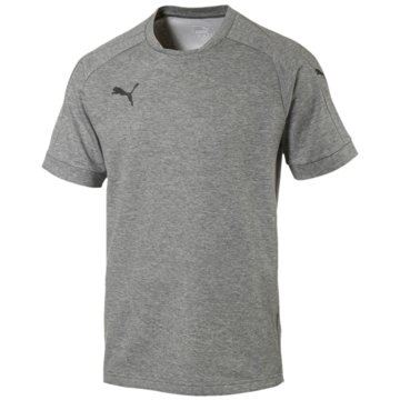 Puma T-ShirtsAscension Casuals Tee Herren T-Shirt grau grau