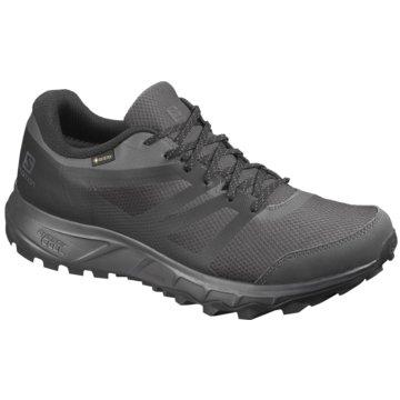 Schuhe TRAILSTER 2 GTX PHANTOM/Ebon grau
