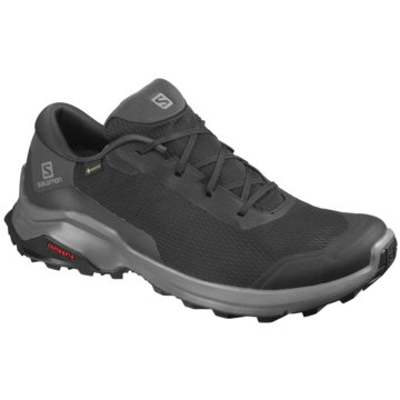 Salomon Outdoor SchuhSchuhe X REVEAL GTX Black/PHANTOM/M schwarz
