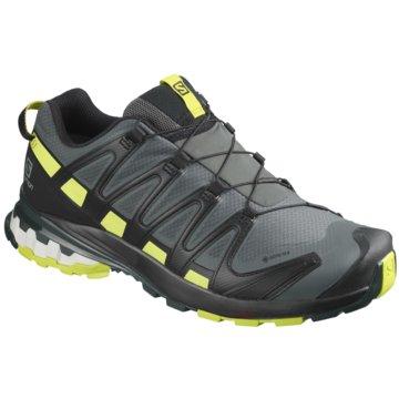 Schuhe XA PRO 3D v8 GTX Urban Chic/ grau