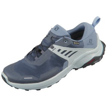 Salomon Outdoor SchuhX Raise GTX blau