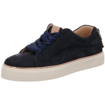 Alpe Woman Shoes Sneaker Low blau