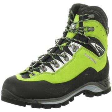 LOWA Outdoor SchuhCEVEDALE PRO GTX® grün
