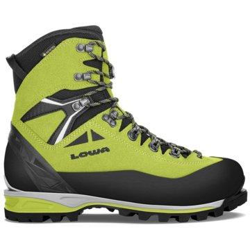 LOWA Outdoor SchuhALPINE EXPERT II GTX - 210022 grün