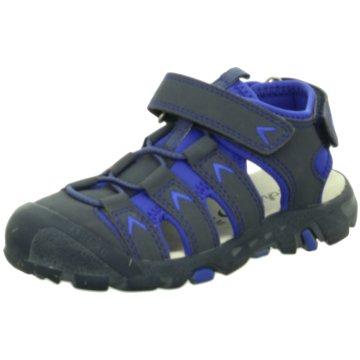 Salamander Wander- & Bergschuh blau