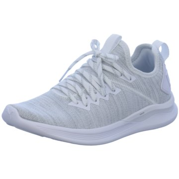 Puma Sneaker LowIGNITE Flash evoKNIT grau