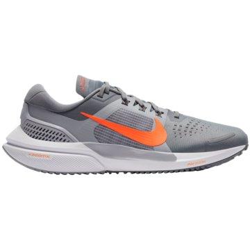 Nike RunningAIR ZOOM VOMERO 15 - CU1855-005 grau