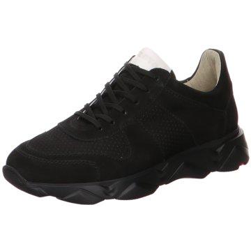 Lloyd Sneaker LowAspen schwarz