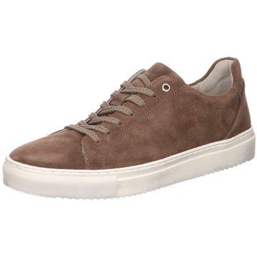 Sioux Sneaker Low -