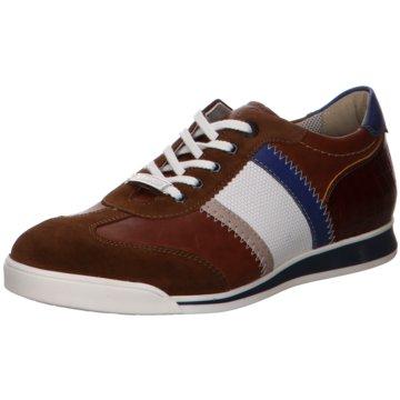 Lloyd Sneaker LowAaron braun