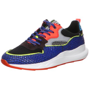 Floris van Bommel Sneaker LowFloris Premium BrightBlue Prin blau