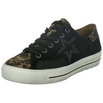 Damen Jetzt Online Kaufen Paul Für Green Sneaker AjSLcR345q