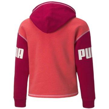 Puma Sweatshirts POWER HOODIE FL G - 589221 pink