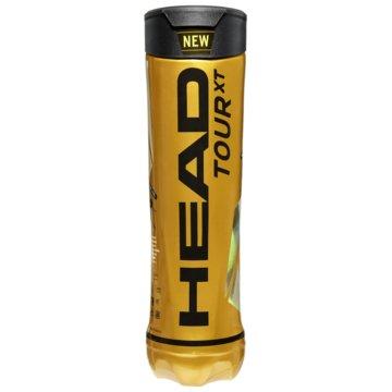 Head Tennisbälle4B HEAD TOUR XT - 12DZ - 570834 sonstige