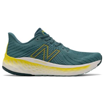 New Balance RunningFRESH FOAM X VONGO V5 blau