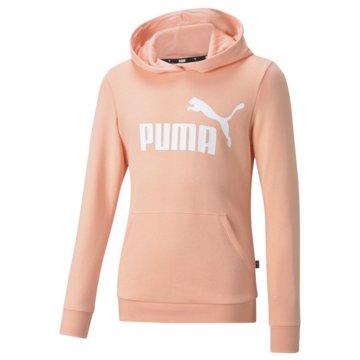 Puma SweatshirtsESS LOGO HOODIE TR G - 587030 rosa